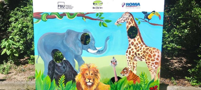 beo zoo vrt fsu oslikavanje životinje